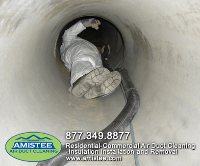 duct-moldductcleaning